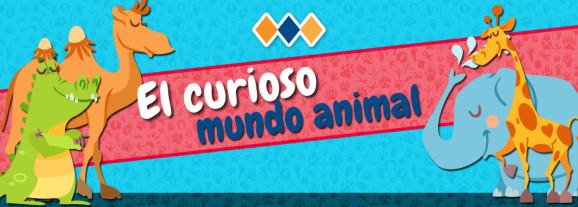 EL CURIOSO MUNDO ANIMAL
