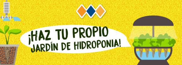 ¡Haz tu propio jardín de hidroponia!