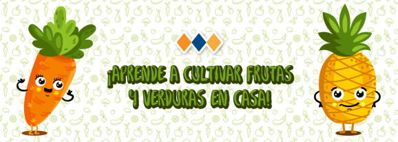 ¡Aprende a cultivar frutas y verduras en casa!